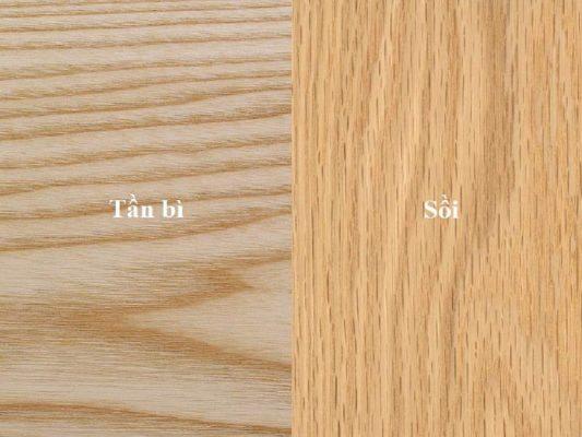 phân biệt gỗ sồi và tân bì